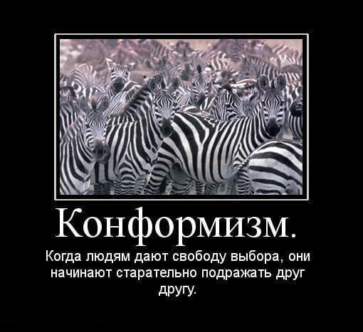 психология картинки 20