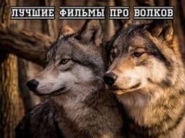 Лучшие фильмы про волков
