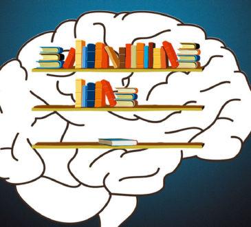 Когнитивное обучение