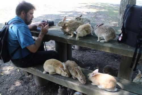 17 мест, которые любители животных должны посетить по крайней мере один раз в своей жизни