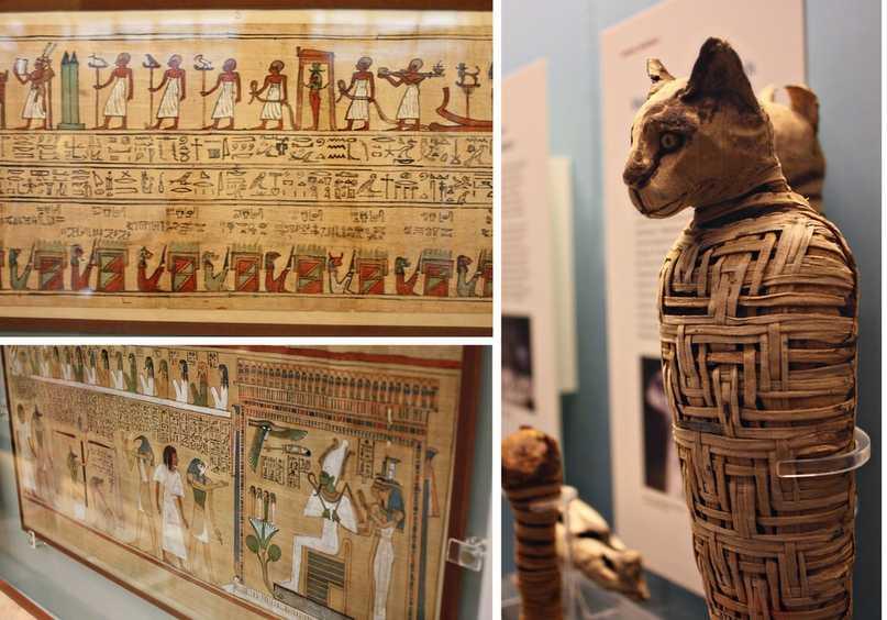 Древние египтяне так любили кошек