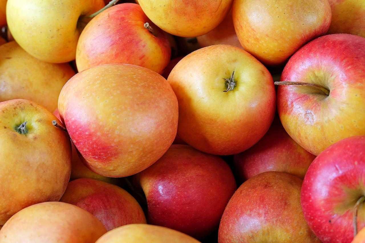 10 самых полезных продуктов, которые стоит есть каждый день